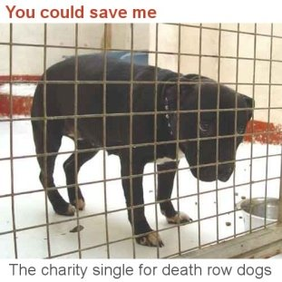 Image: You Could Save Me